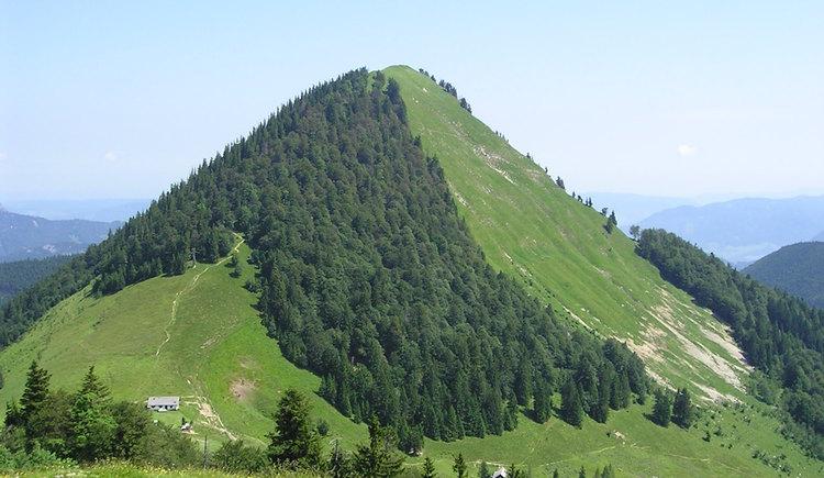 Mountain Faistenauer Schafberg in Faistenau (© Tourismusverband Faistenau)