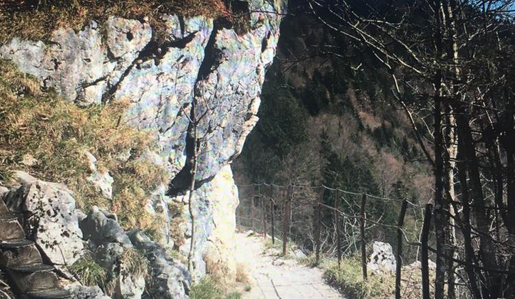 Wunderschöner Höhenwanderweg in Bad Goisern mit toller Aussicht auf das Bergpanorama. (© Gabriele Untersberger)