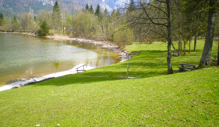 dog bathing area with seaside beach. (© Ferienregion Dachstein Salzkammergut)
