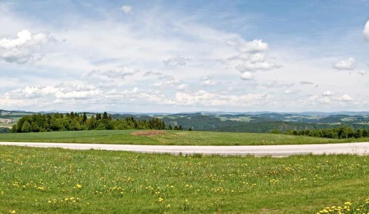 Panorama Paschinger Hügel (© WGD Donau Oberösterreich Tourismus GmbH/Weissenbrunner)