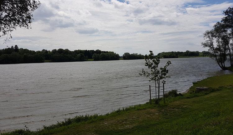 Au an der Donau