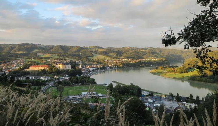 Blick auf Grein an der Donau (© Karmen Nahberger)
