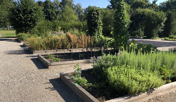 Botanica Park: Apothekergarten (© Tourismusverband Urlaubsregion Vitalwelt Bad Schallerbach / Sarah Holzer)