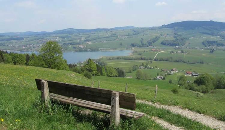 Blick auf den Irrsee, im Hintergrund die Berge, im Vordergrund eine Rastbank. (© www.mondsee.at)