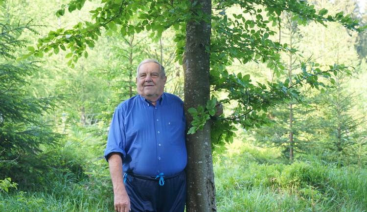 Hermann Lehner (© Hermann Lehner)