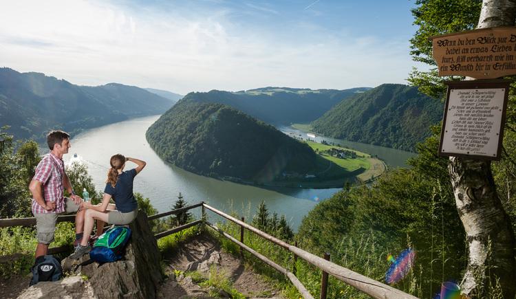Donausteig - Schlögener Blick (© WGD Donau Oberösterreich Tourismus GmbH/Hochhauser)