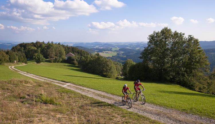 Mountainbiken%2bim%2bM%c3%bchlviertel-4 (© OÖ Tourismus)