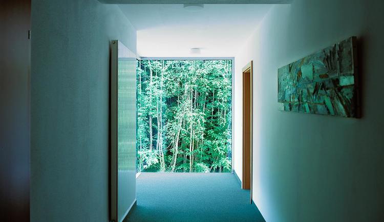 Waldblick aus dem Hotel Garni Wallner Hinterstoder