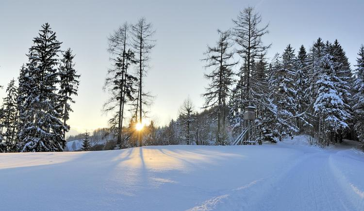 Winter2 (© Karl Heinz Ruber)