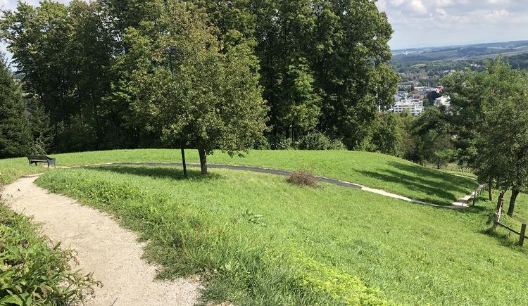 Madgalenaberg-Runde (© Urlaubsregion Vitalwelt Bad Schallerbach / Sarah Holzer)