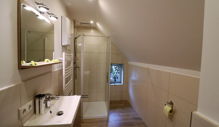 Bright, modern bathroom with shower cubicle, towel dryer, sink and toilet