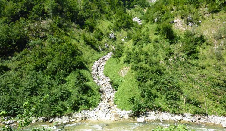 Wanderweg zwischen Obertraun und Obertraun