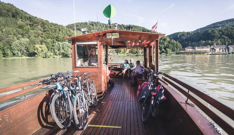 Mit der Donau-Radfähre in Schlögen. (© Oberösterreich Tourismus GmbH/Moritz Ablinger)