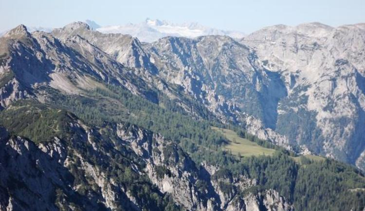 Dachsteinblick von der Höss in Hinterstoder (© Bürtlmair)
