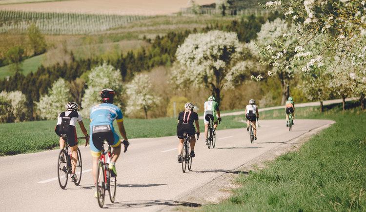 Gruppe Rennradfahrer