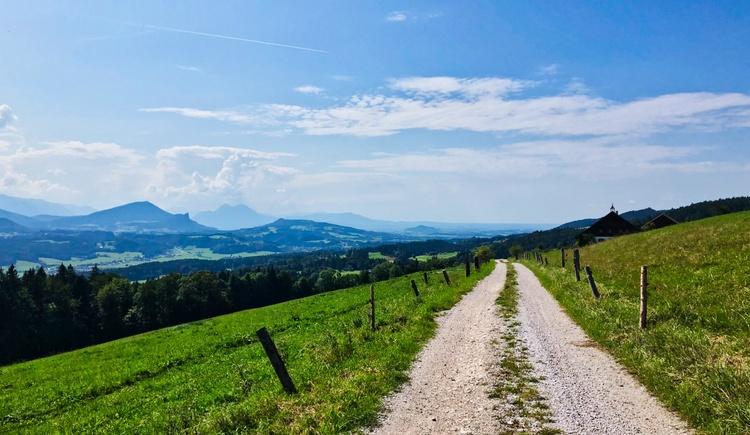 Blick Richtung Salzburg mit Staufen und Gaisberg (© Salzkammergut / Harald Maier)