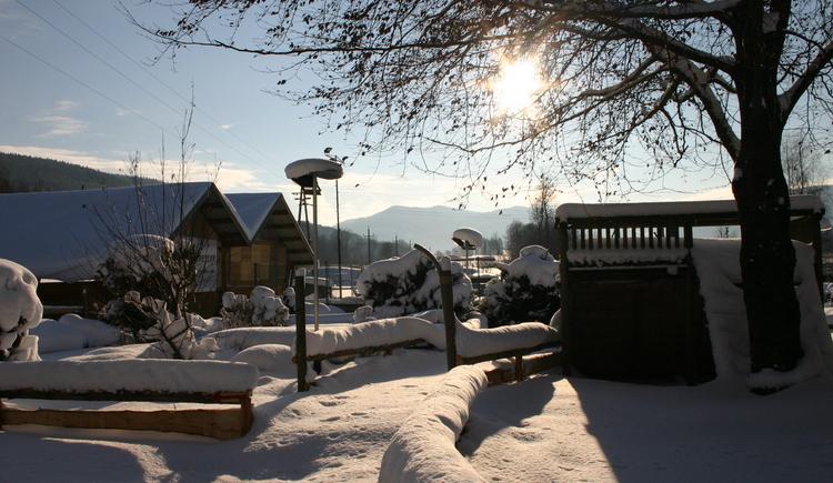 Winter Rosslwirt