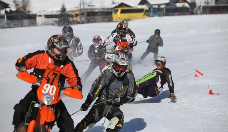 Beim Gosauer Skijöring geht´s heiß her. (© Viorel Munteanu)