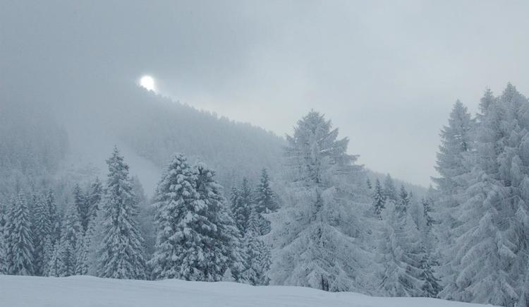 Winterlandschaft (© Ramsebner)