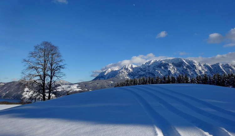 Wintertraum am Attersee (© Andreas Graf)