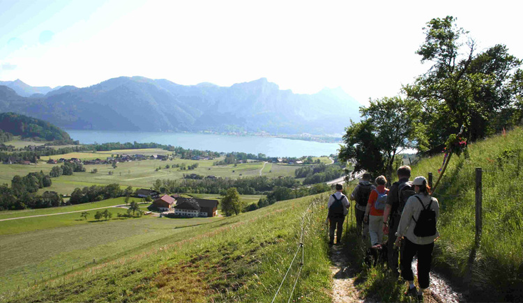 Wanderer auf einen Feldweg, im Hintergrund Blick auf den Ort, den See und die Berge. (© Tourismusverband MondSeeLand)