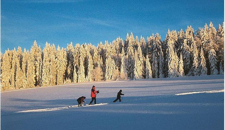 Winterlandschaft (© Haagerhof)