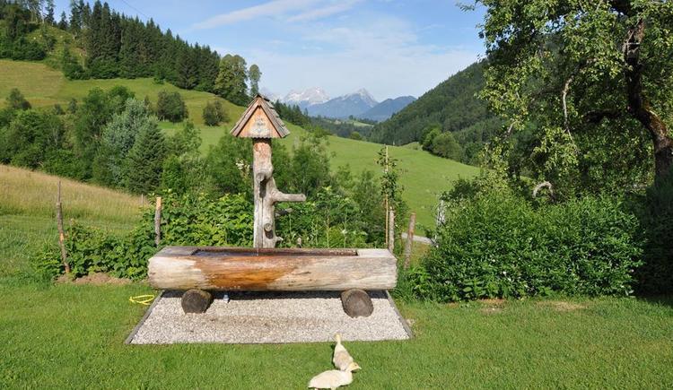 Hofbrunnen (© Schmidthaler)