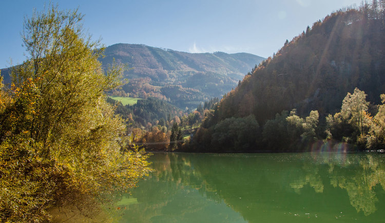 (© TV Nationalpark Region Ennstal/Melanie Eichenauer)