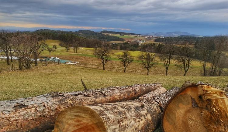 Aussicht von Oberweitersdorf (© Tanja Mittermair)