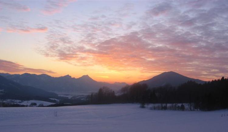 Abendstimmung auf der Langlaufloipe Nußdorf Oberwang. (© TVB Attersee-Attergau)