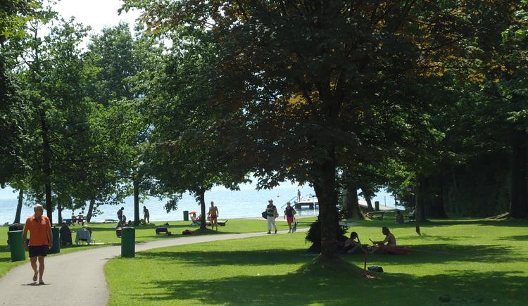 Sommertag im Sprinzensteinpark (© Tourismusverband Attersee-Attergau)
