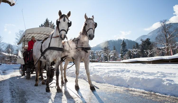 Pferdekutsche im Winter (© Leitner Daniel)