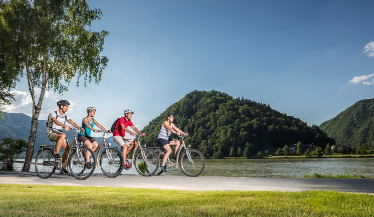 Donauradweg - Schlögener Schlinge (© WGD Donau Oberösterreich Tourismus GmbH/Hochhauser)