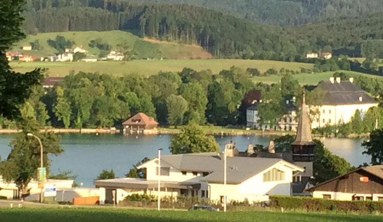 Apartment mit Seeblick - Ausblick zur Villa Paulick und Schloss Kammer
