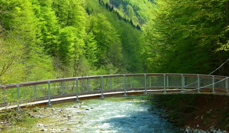 Wildnistrail Buchensteig - Reichraming. (© Nationalpark Kalkalpen)