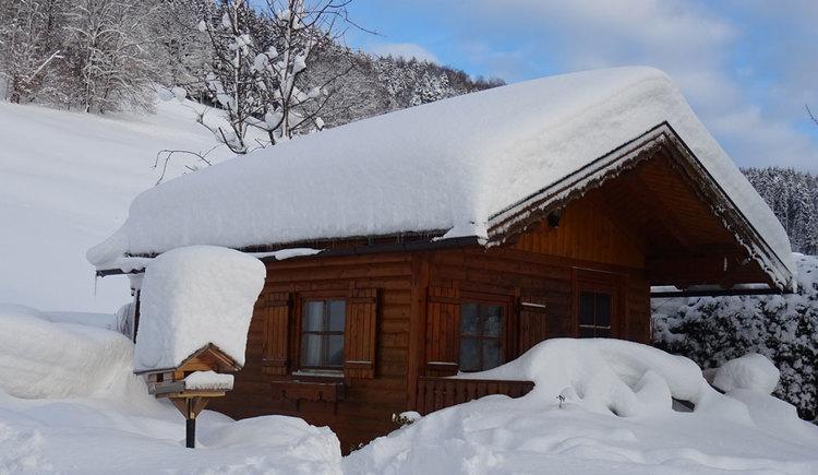 Tief verschneite Gartenhütte, im Hintergrund schneebedeckte Wiesen