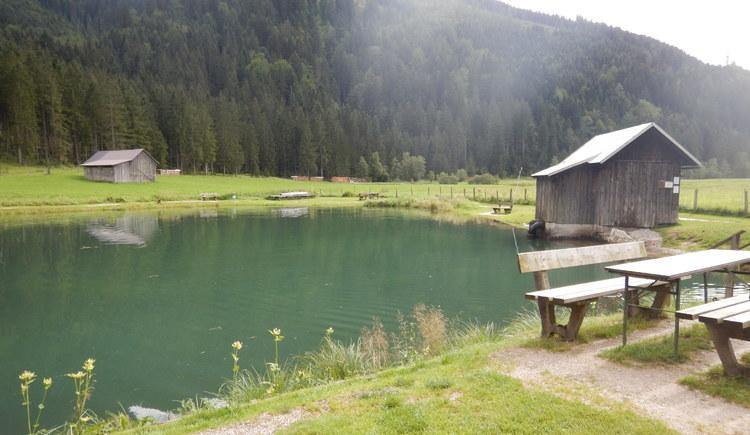 Forellenteich inGosau, mit tollem Bergblick. (© Ferienregion Dachstein Salzkammergut)