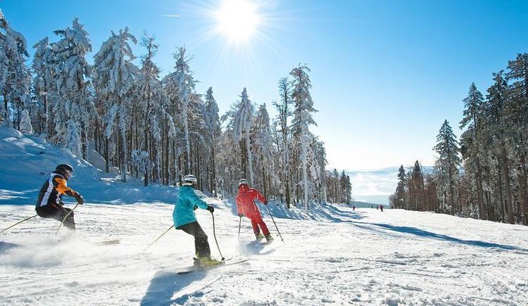 Sonnenskilauf (© OÖ Tourismus / Erber)