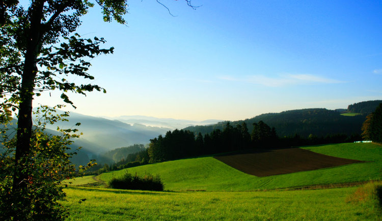 Granithochland Mühlviertel - Hirschbach im Mühlkreis (© Tourismusverband Mühlviertler Kernland/Herbert Schauer)