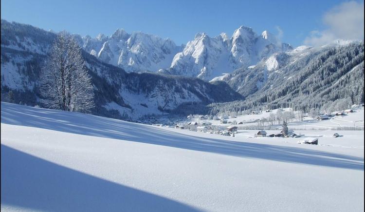 Das verschneite Gosautal mit Blick auf den Gosaukamm. (© Ehrenfried Vierthaler)