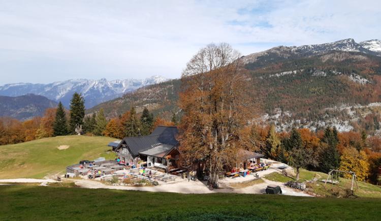 Blick auf die Hütte. (© Tourismusverband Bad Ischl)
