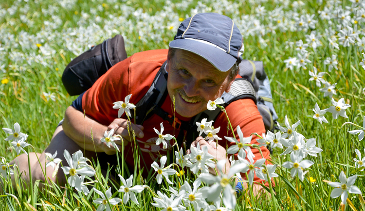 Person liegt in einer Blumenwiese