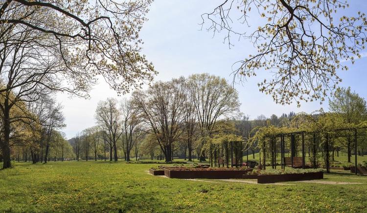 Botanica Park: Rosengarten (© Tourismusverband Urlaubsregion Vitalwelt Bad Schallerbach / Mühlleitner)