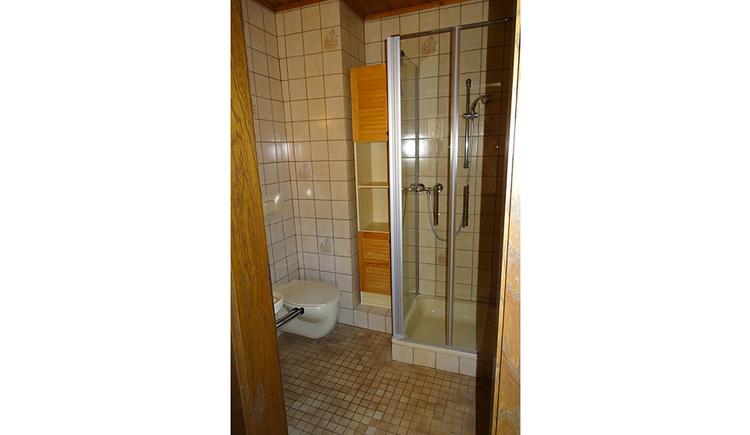 shower, toilette