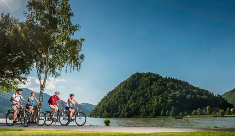 Donauradweg bei Schlögen (© WGD Donau Oberösterreich Tourismus GmbH/Hochhauser)