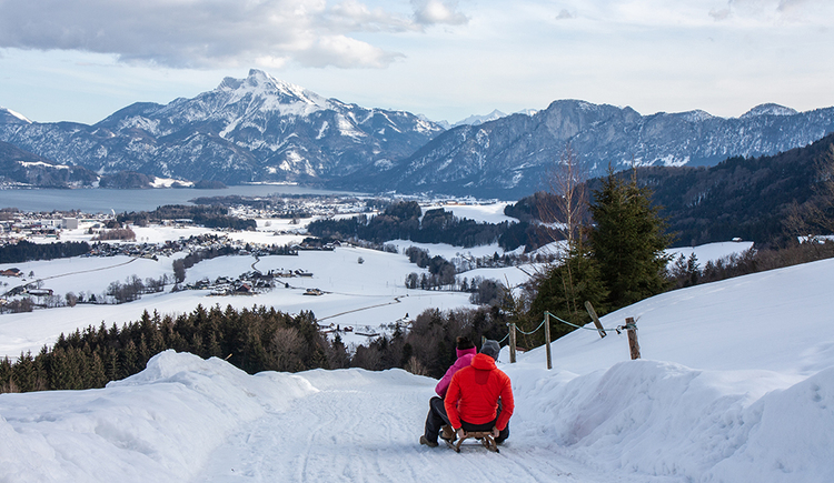 Tobogganing - Fun for big and small children (© TVB Mondsee-Irrsee)