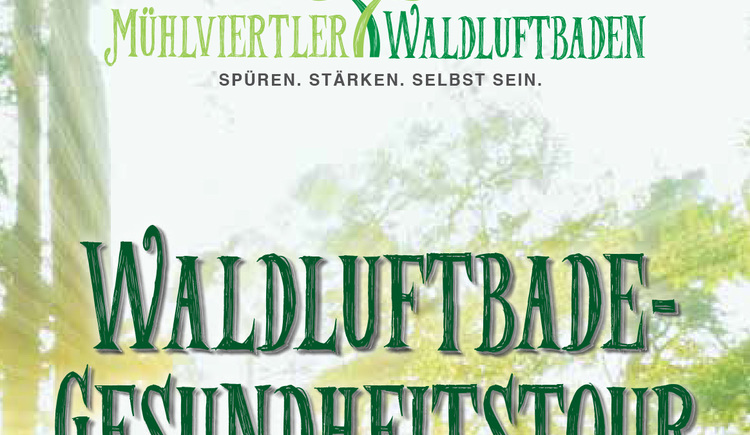 Waldluftbade-Gesundheitstour. (© Naderer Communication)