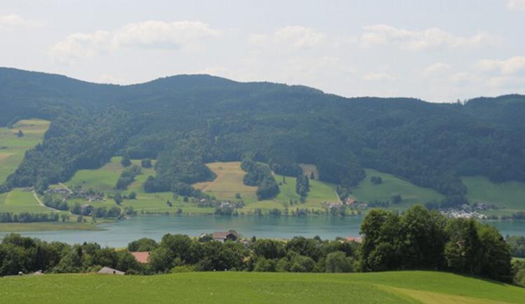 Ausblick vom Ferienhaus auf den Irrsee und die Landschaft. (© Maier)