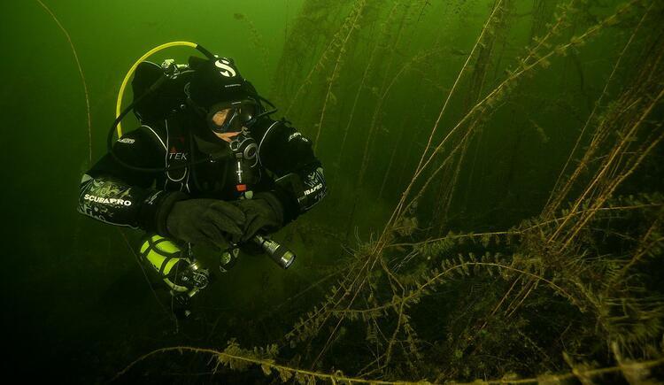 Auf Tauchgang im Traunsee mit Adventure Diving (© Adventure Diving)