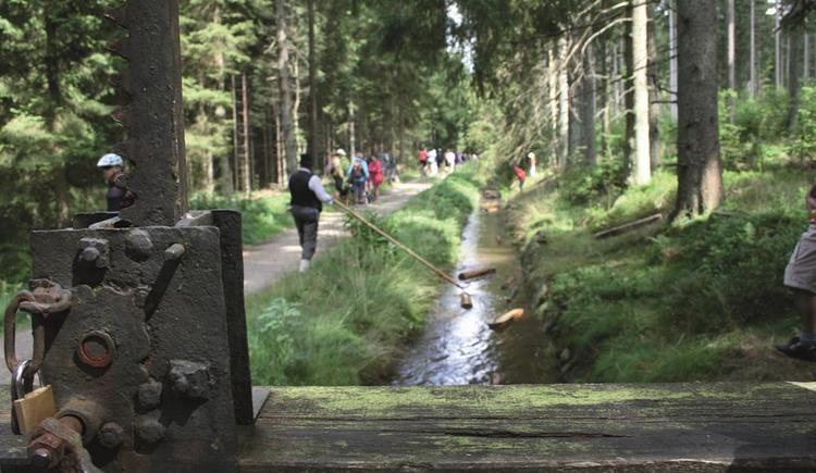 Schauschwemme am Iglbach (© Ferienregion Böhmerwald)
